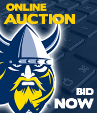 Online Auction - Bid Now!
