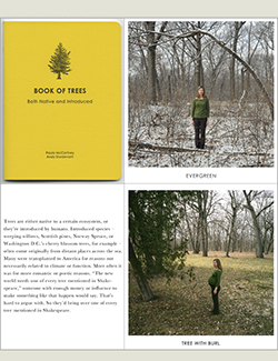"""Book of Trees,"" by Paula McCartney"