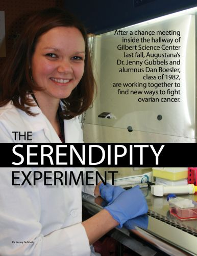 The Serendipity Experiment